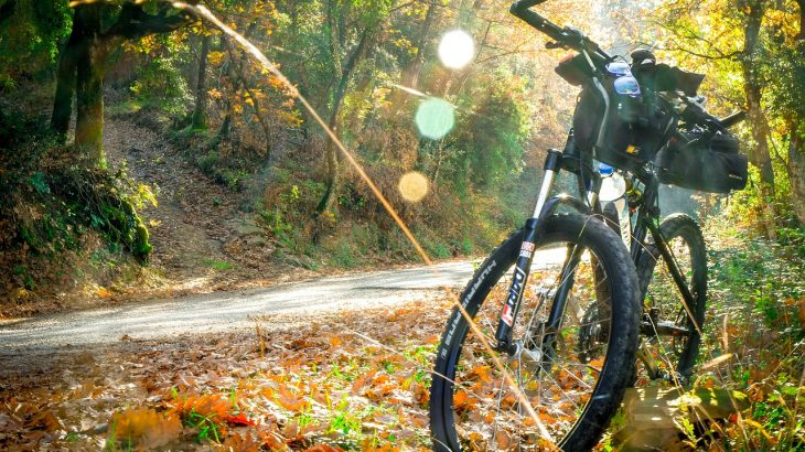 fietsvakantie Duitsland